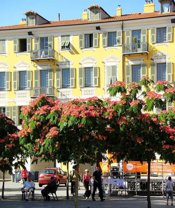 Nizza Place Garibaldi (c) spinagel.de