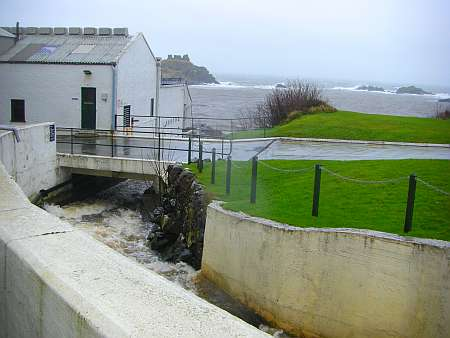 Lagavulin distillery coast (c) spinagel.de
