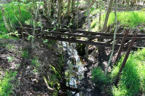 Alte Torfbahn im Himmelmoor Quickborn (c) spinagel.de
