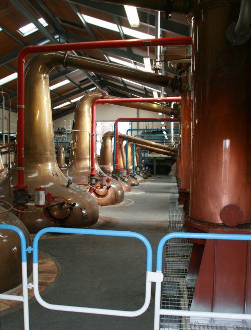 Glefiddich destillery stills (c) spinagel.de