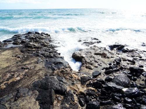 Punta Salinas Fuerteventura 2 (c) spinagel.de