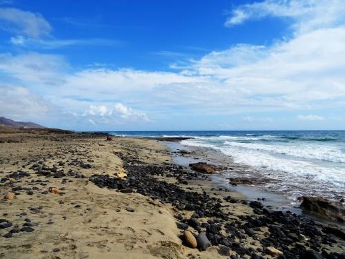 Punta Salinas Fuerteventura (c) spinagel.de