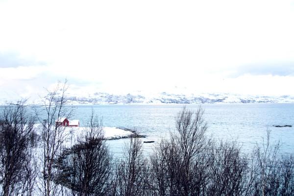 skarsfjord spinagel.de
