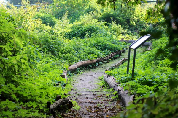 Bad Bodenteich Lüneburger Heide 2 spinagel_de